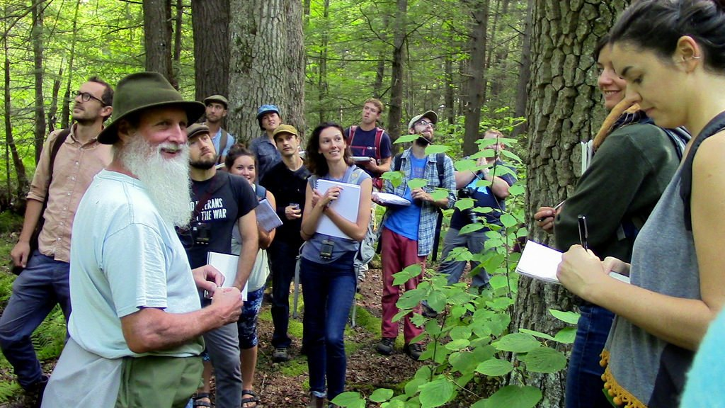 An annual September trip to the black gum swamp with ecologist Tom Wessels.